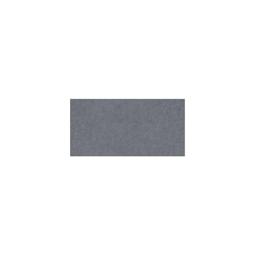AC Cardstock - Charcoal lisse